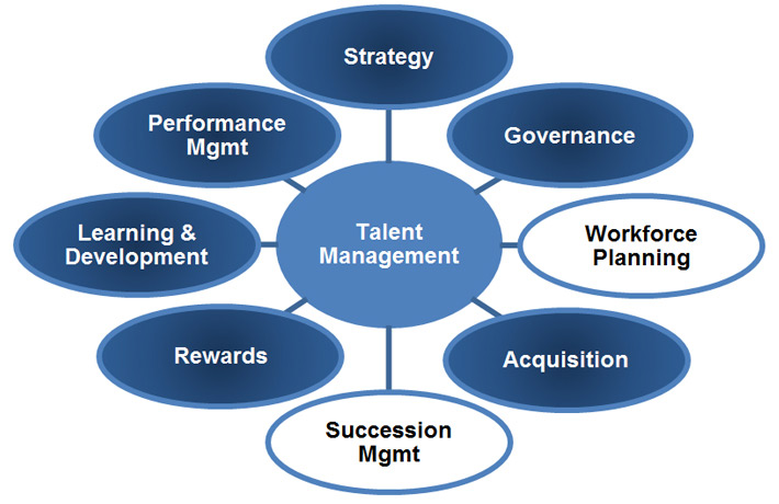 Talent management elements Long description follows.